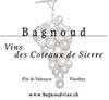 Bagnoud Vins